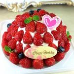 ドーム型いちごケーキ(要予約)